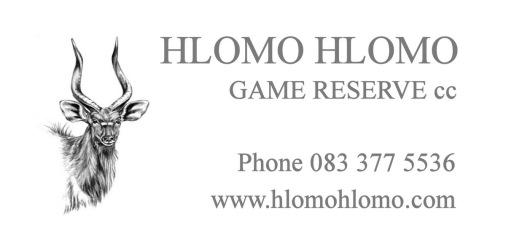Hlomo Hlomo